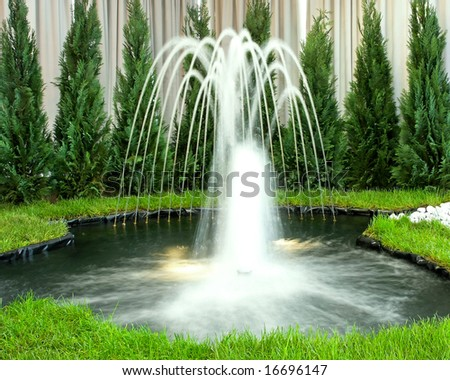 Beautiful dreamy water geyser with green plants