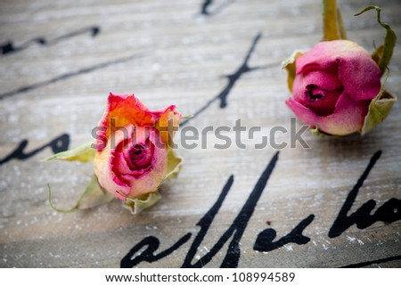 Beautiful dried pink roses on wooden background