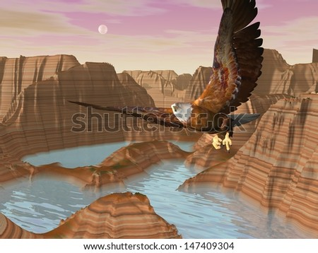 Beautiful eagle flying above canyons with river by full moon light - stock photo