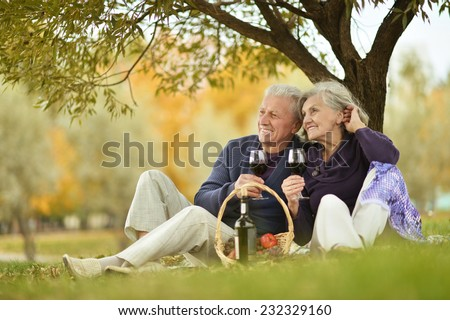 Beautiful elderly couple at a picnic in the park - stock photo