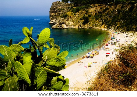 Beautiful European coastal scene with lovely green cactus in the foreground