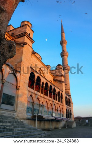 Beautiful evening view of the Blue Mosque against the background of bright sky with a moon and flying birds in Sultanahmet, Istanbul, Turkey - stock photo