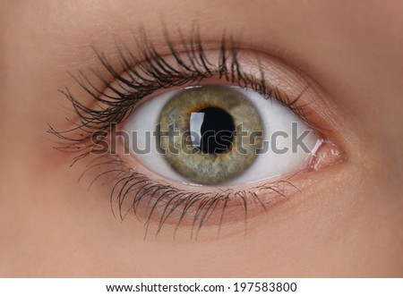 Beautiful eye, closeup