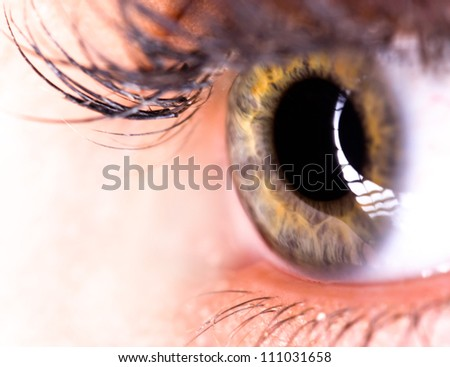 Beautiful Eye of Woman - stock photo
