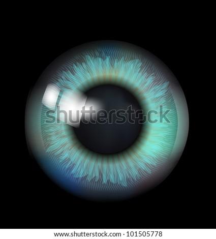 Beautiful Eyeball - stock photo