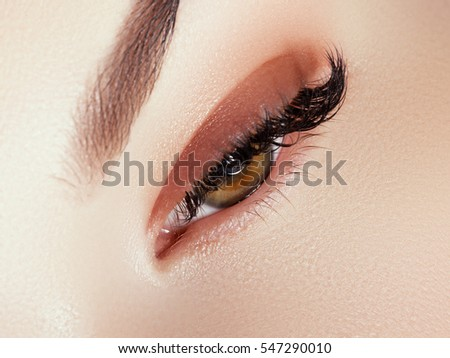 Beautiful face makeup. Long natural eyelashes. Perfect make-up closeup. Part of female face. Glamour lashes and black eyeliner make up. Perfect art, cosmetic and beauty. Eye with lashes