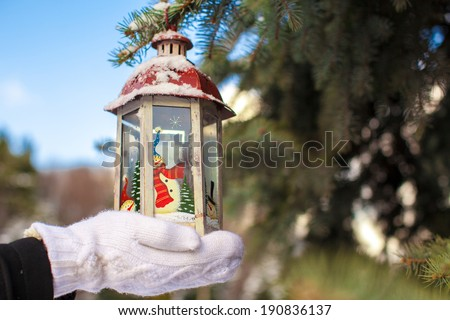 Beautiful fairytale lantern hanging on fir branch in forest