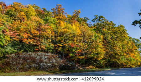 Beautiful fall color on Blue Ridge Parkway - stock photo