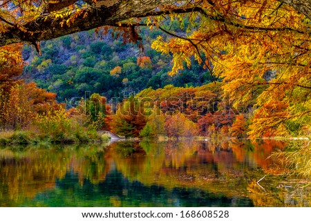 Beautiful Fall Color on Giant Cypress Trees Reflected in the Clear Waters of the Frio River at Garner State Park, Texas - stock photo