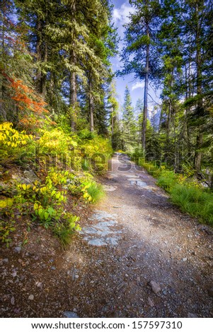 Beautiful fall colors on a hiking trail in Glacier National Park, Montana - stock photo