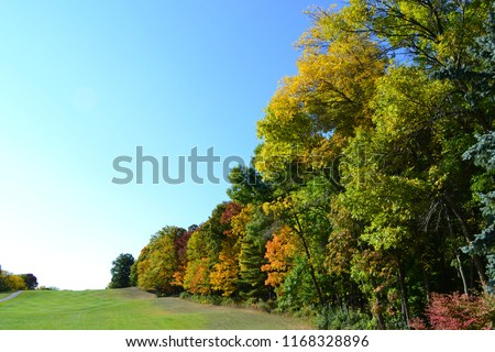 Beautiful fall colors with room for copy space.