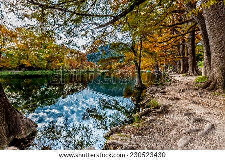Beautiful Fall Foliage on Bald Cyprus Trees Surrounding the Crystal Clear Frio River, Texas. - stock photo
