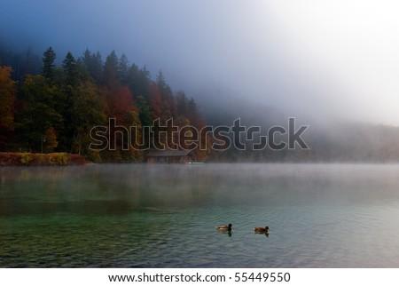 Beautiful fall on the Alpine lake (Alpsee) beneath the Neuschwanstein castle - stock photo