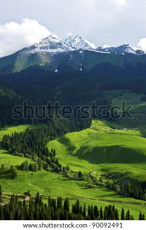 beautiful farmland with ice mountain and trees
