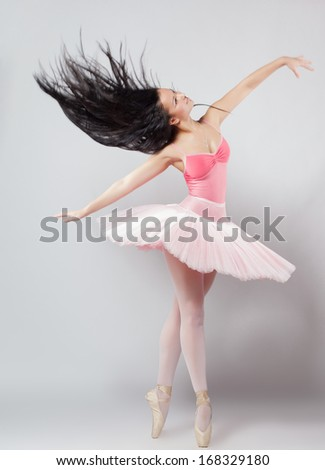 Beautiful female ballet dancer - stock photo