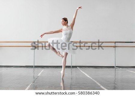 Beautiful female ballet dancer in class