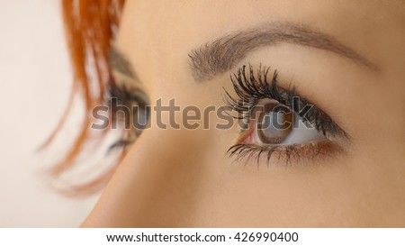 Beautiful female brown eyes with long eyelashes close up. Close up of a brown woman eyes isolated on a white background. Beautiful girl eyes and eyelashes. Attractive face of female looking up.  - stock photo