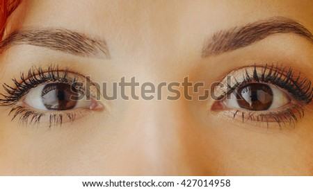 Beautiful female brown eyes with long eyelashes close up. Close up of a brown woman eyes looking at camera. Beautiful girl eyes and eyelashes. Attractive face of female looking up. - stock photo
