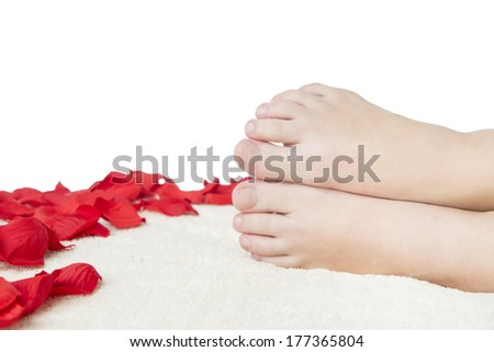 Beautiful female feet and rose petals. - stock photo