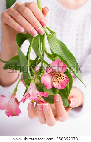 Beautiful female hand with franch manicure holds a delicate flowers.