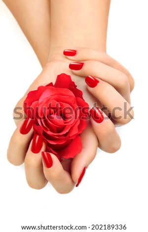 Beautiful Female Hands With Red Nail Polish On The Nails Holding Rose Petals White Background