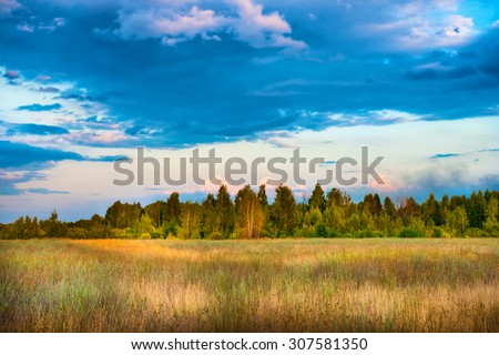 Beautiful field and forest with blue sky at sunset time. Countryside landscape - stock photo