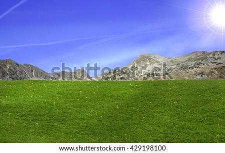 Beautiful field of grass in mountain - stock photo