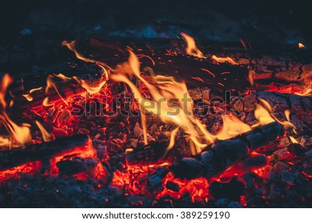 Beautiful fire close-up, hike in the woods, travel, evening around the campfire - stock photo