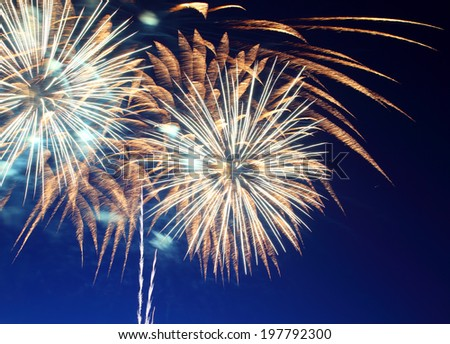 beautiful fireworks show in the night sky  - stock photo