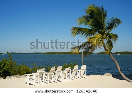 Beautiful Florida Keys along the shoreline with palm tree and beach lounge chairs.