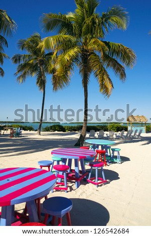 Beautiful Florida Keys along the shoreline with palm trees and beach chairs. - stock photo