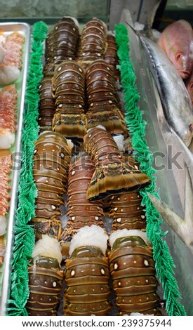 Beautiful Florida Lobster Tails in a display case at the market - stock photo