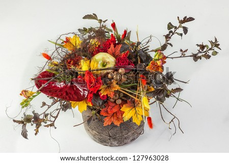 Beautiful flower arrangements for winter, spring, summer and autumn with colored backgrounds of red, purple and wintry white