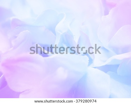 Beautiful flower background / wallpaper made with blue - purple color tone filters effect.