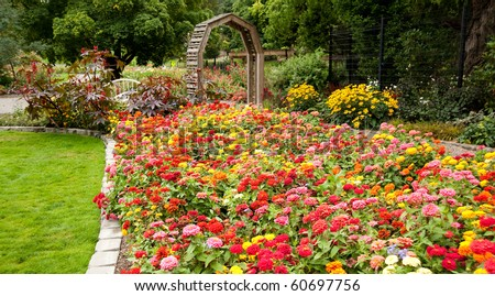 Beautiful Flower Bed - stock photo