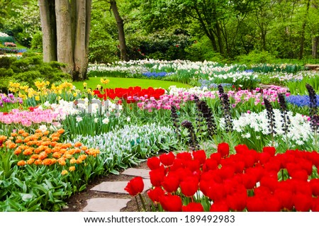 Image gallery holland flower gardens for Beautiful flower beds