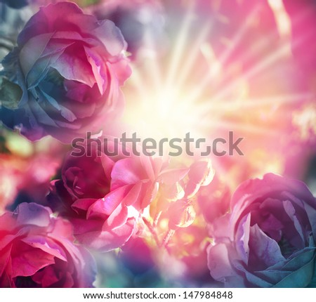 beautiful flowers abstract background made with color filters - stock photo