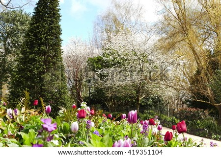 Spring Landscape Pond Rhododendron Stock Photo 58090636 Shutterstock