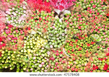 beautiful flowers at the flower market in Hong Kong - stock photo