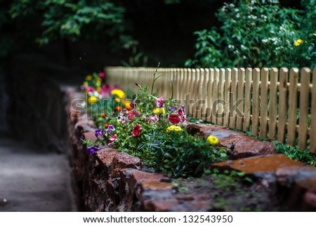 Beautiful flowers at the light fence after a summer rain - stock photo