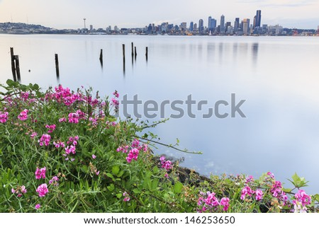 Beautiful flowers in the foreground and city in the background - stock photo