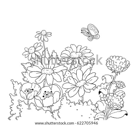 Beautiful Flowers In The Garden And A Cute Butterfly Illustration For Children Coloring Page