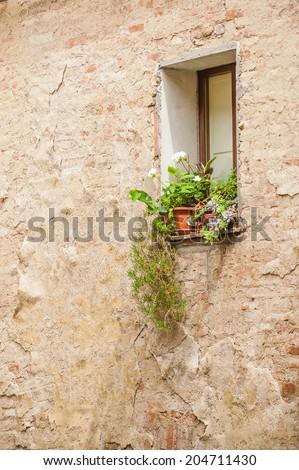 Beautiful flowers in the Italian window, Tuscany - stock photo