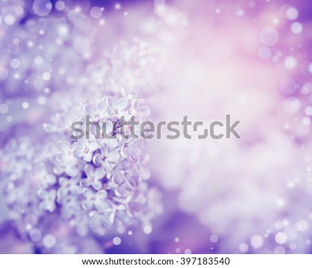 Beautiful flowers of lilac , close up. Lilac blooming background. Light pastel floral border - stock photo
