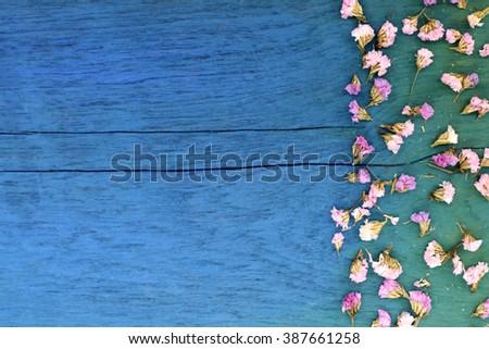 Beautiful flowers on blue wood. - stock photo