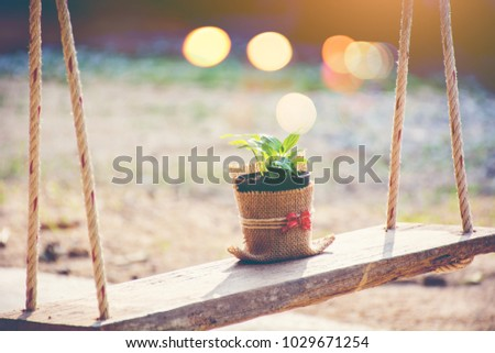 Beautiful flowers on the swing.
