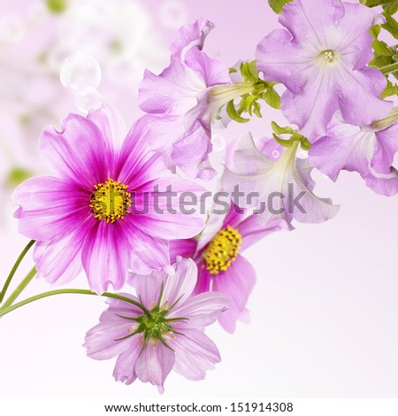 Beautiful flowers spring garden background - stock photo
