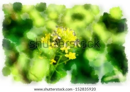 beautiful flowers watercolor - stock photo