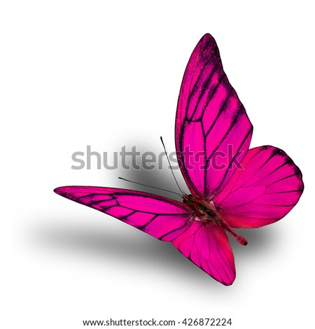 Beautiful flying fancy pink butterfly isolated on white background with soft shadow beneath - stock photo