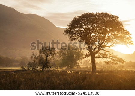 Beautiful foggy misty Fall sunrise over countryside surrounding Crummock Water in Lake District in England